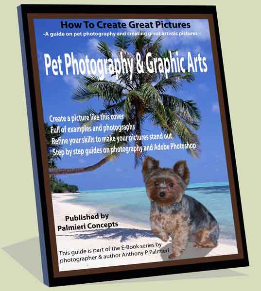 Book Cover Photography Tips ~ Pet photography guide tips ebook graphic